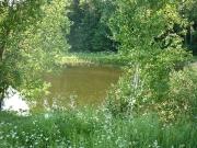 Глубокий пруд