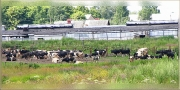 Вид на ферму